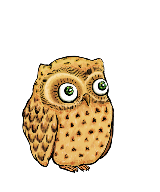 owl-2964194_960_720.png